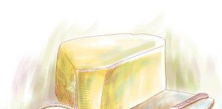 ser – jak wybrać